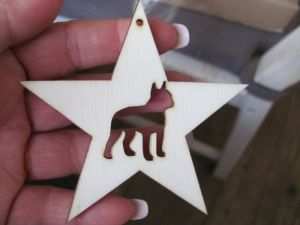 Dog in star